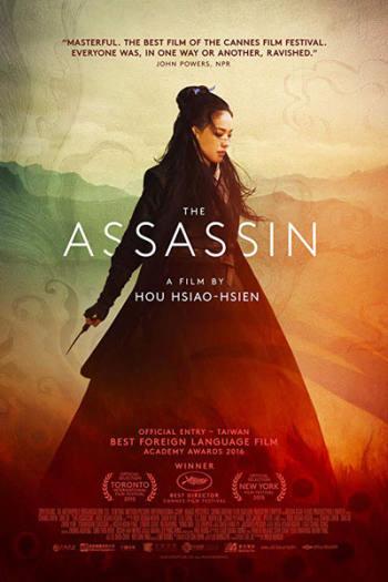 دانلود زیرنویس فیلم The Assassin 2015