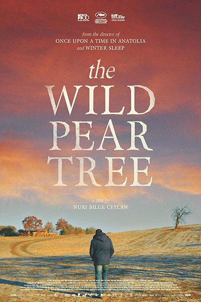دانلود زیرنویس فیلم The Wild Pear Tree 2018