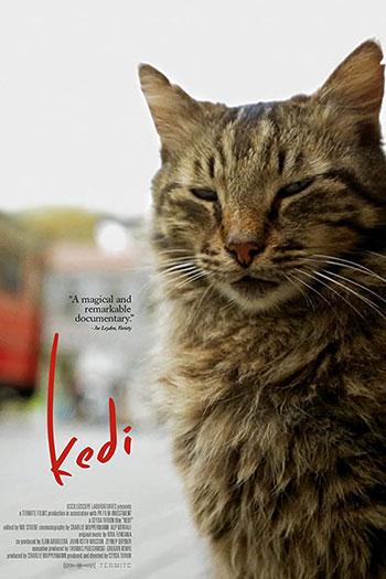 دانلود زیرنویس مستند Kedi 2016