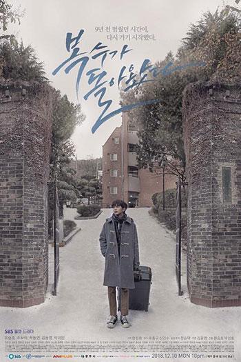 دانلود زیرنویس سریال کره ای My Strange Hero