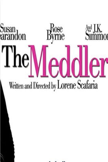 دانلود زیرنویس فیلم The Meddler 2015