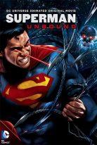 Superman Unbound 2013