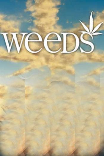دانلود زیرنویس سریال Weeds