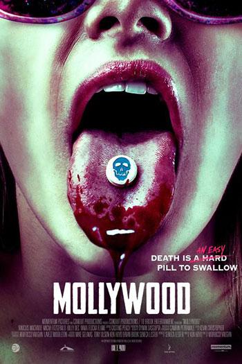 دانلود زیرنویس فیلم Mollywood 2019