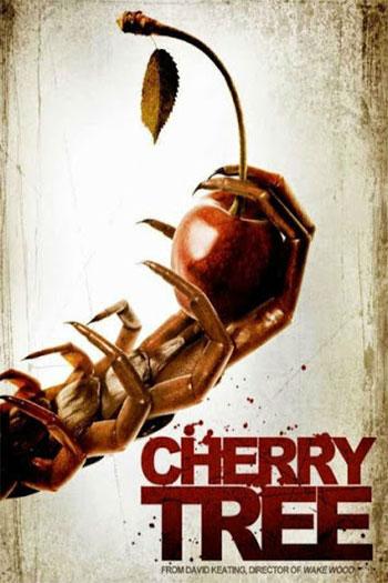 Cherry Tree 2015