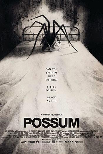 Possum 2018
