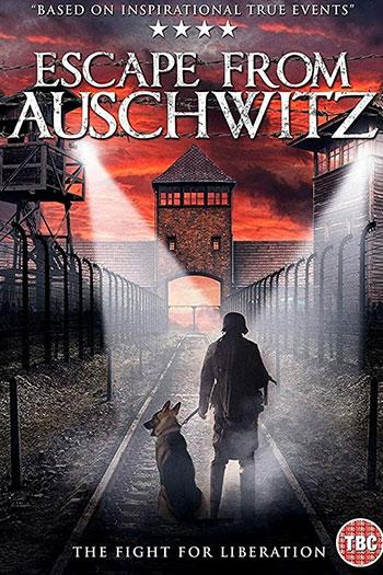 دانلود زیرنویس فیلم Escape from Auschwitz 2020