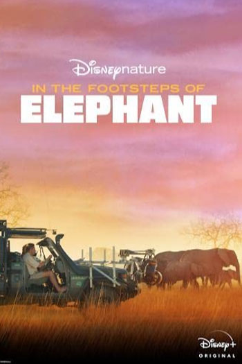 دانلود زیرنویس مستند In the Footsteps of Elephant 2020