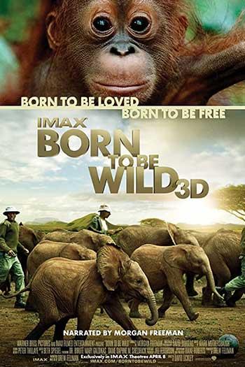 دانلود زیرنویس مستند Born to Be Wild 2011