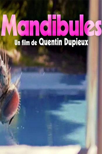 دانلود زیرنویس فیلم Mandibles 2020
